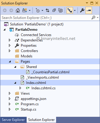 Reuse UI with Partial Views in ASP NET Core MVC and Razor