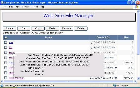 Web Site File Manager | BinaryIntellect Knowledge Base